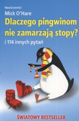 Dlaczego pingwinom nie zamarzają stopy?