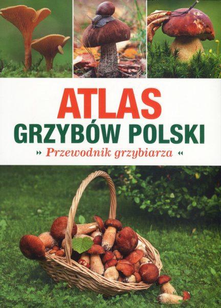 Atlas grzybów Polski. Przewodnik grzybiarza