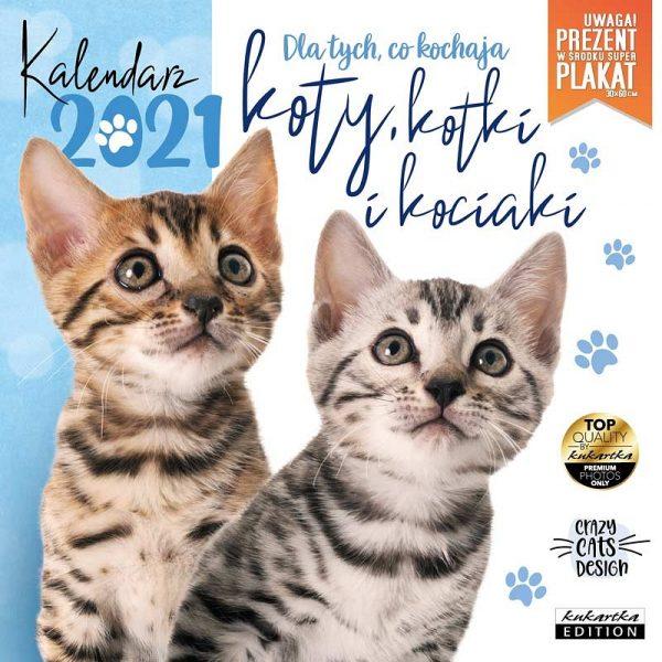 Kalendarz 2021 – Koty, kotki i kociaki