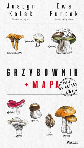 Grzybownik + mapa